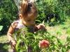 Сафиюшка в саду
