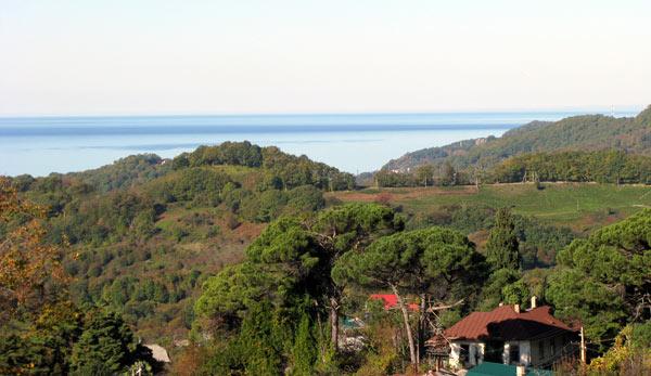 Вид из сада на дом Великого князя Константина